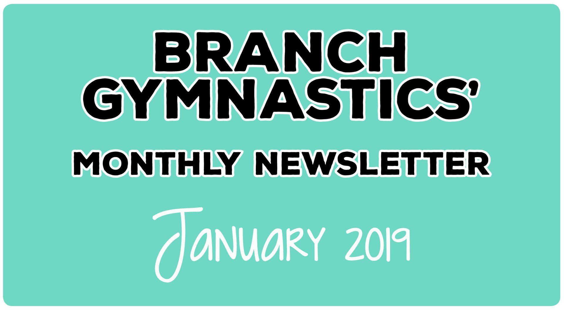 Branch Gymnastics' January Newsletter